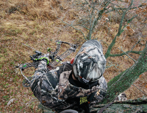 LtlAcorn.com-10 Trail Camera Features To Look For